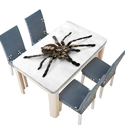 (PINAFORE Polyester Tablecloth Table Cover Tarantula Spider,Poecilotheria Metallica,in Front of White Background Wedding Restaurant Party Decoration W73 x L112 INCH (Elastic Edge))