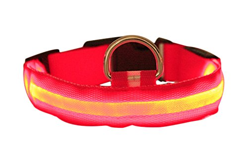 freerun-pet-safety-pet-dog-puppy-led-collar-flashing-light-up-adjustable-light-nylon-collar-red-s