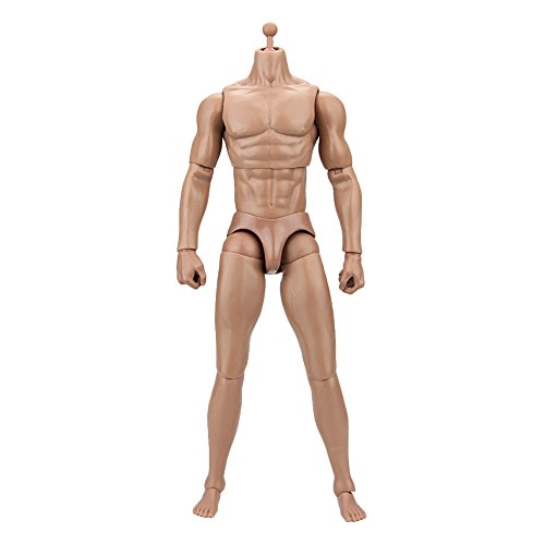 1 6 Scale Figures (Owfeel No.1 Action Muscle Male Nude Body Figure Soldier Model Toys Doll 1:6 Scale for Hot Toys)