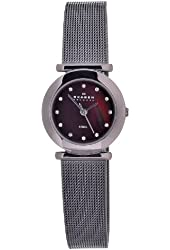 Skagen Women's 107SDDD Quartz Stainless Steel Brown Mother Of Pearl Dial Watch