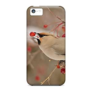 Hard Plastic Iphone 5c Case Back Cover,hot Bird On Winter Time Case At Perfect Diy