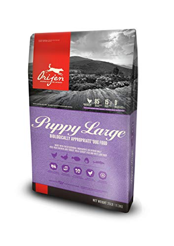 Orijen Large Puppy Formula Dog Food, 25 lb