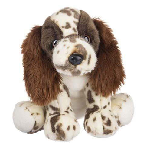 English Springer Spaniel Puppies - 1