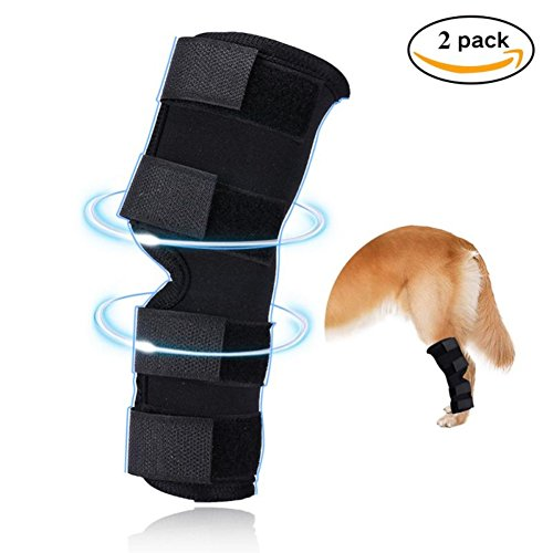 Leg Brace, Extra Supportive Hock Joint Wrap Protects Wounds When Heals, Back Leg Compress Brace Prevents Injuries and Sprains, Helps with Loss of Stability Caused by Arthritis, M (Dog Hind Legs)
