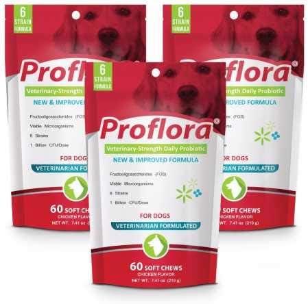 Pet Health Solutions 3PACK Proflora Probiotic Soft Chews 180 Count