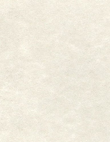 8 1/2 x 11 Paper - Cream Parchment (1000 Qty.) by Envelopes.com