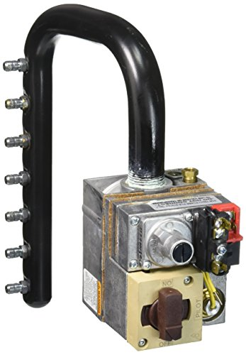 Zodiac R0496502 Propane Gas Manifold Assembly Replacement...