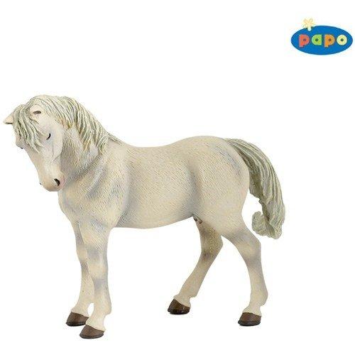 Lipizzaner Mare (Farm White Horse)