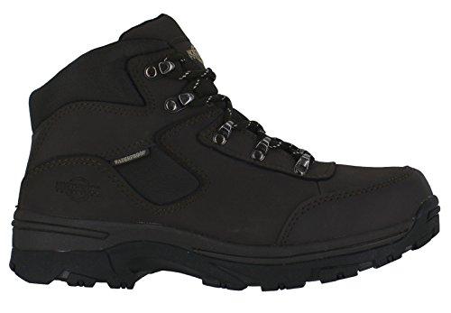 en Territory cuir chaussures pour Northwest femme YZpwqpE
