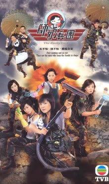 the-family-link-us-versionin-cantonese-w-chinese-english-subtitled-hong-kong-tvb-21-episode-drama-se