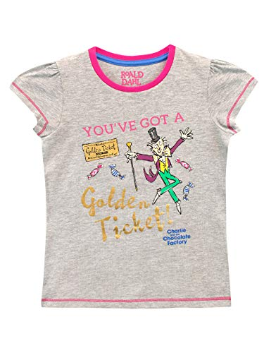 Roald Dahl Girls' Charlie and The Chocolate Factory T-Shirt Gray Size 7 (Charlie And The Chocolate Factory Chapter Questions)