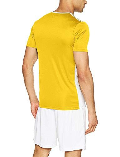 Entrada Uomo T 18 yellow Giallo Adidas shirt white FIdHwHq