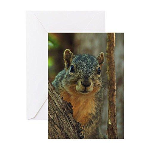 CafePress Squirrel Greeting Card, Note Card, Birthday Card, Blank Inside Matte