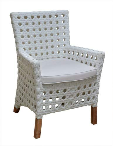 Amazon Com East At Main Kentucky Outdoor Arm Chair W Sunbrella