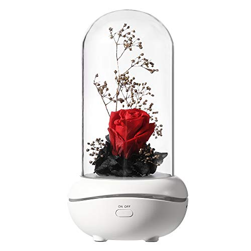 Roses Lamp - NovoLido Night Lights for Kids & Aromatherapy Diffuser 2 in 1, Room Decor Aroma Lamp, Never-Ending Artificial Rose Lamp for Decoration, Rechargeable and Portable Essential Oil Diffuser (Red Rose)