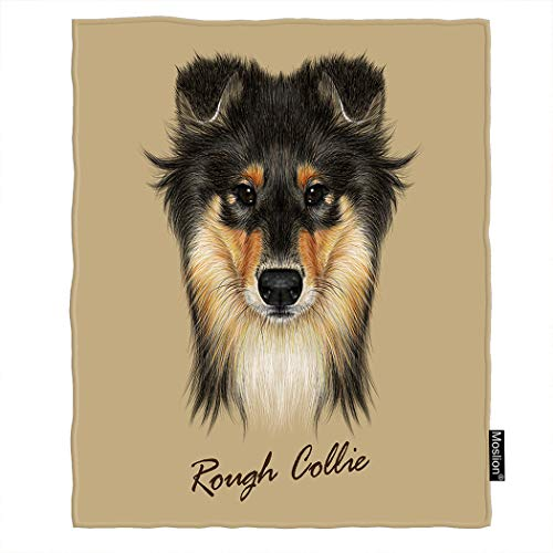 Moslion Dog Blanket Cute Collie Face of Mahogany Sable Rough Collie Or Shetland Sheepdog Throw Blanket Flannel Home Decorative Soft Cozy Blankets 40x50 Inch for Baby Kids Pet Brown