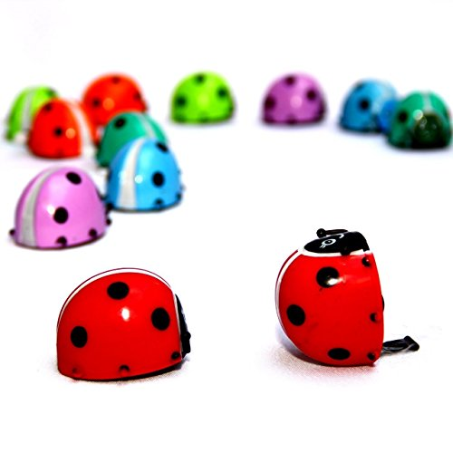 Lady Toy - Dazzling Toys Flipping Wind-up Lady Bugs - 12 Pack - Bulk. Great for parties and Favor bags