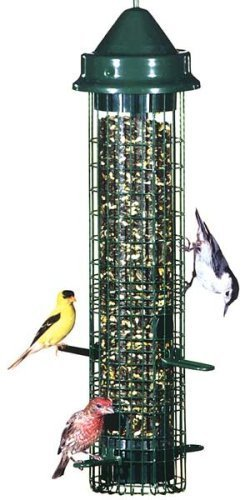 Brome 1015 Squirrel Buster Classic Garden, Lawn, Supply, Maintenance (Seed Classic Feeder)