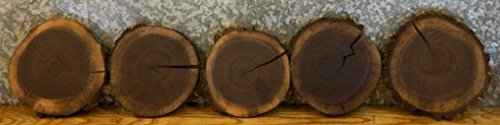 10- Black Walnut Natural Edge Thin Cut Rounds/Log Sliced Value Pack 35005 T: 1''D: 10 7/8'' - (Sliced Log)