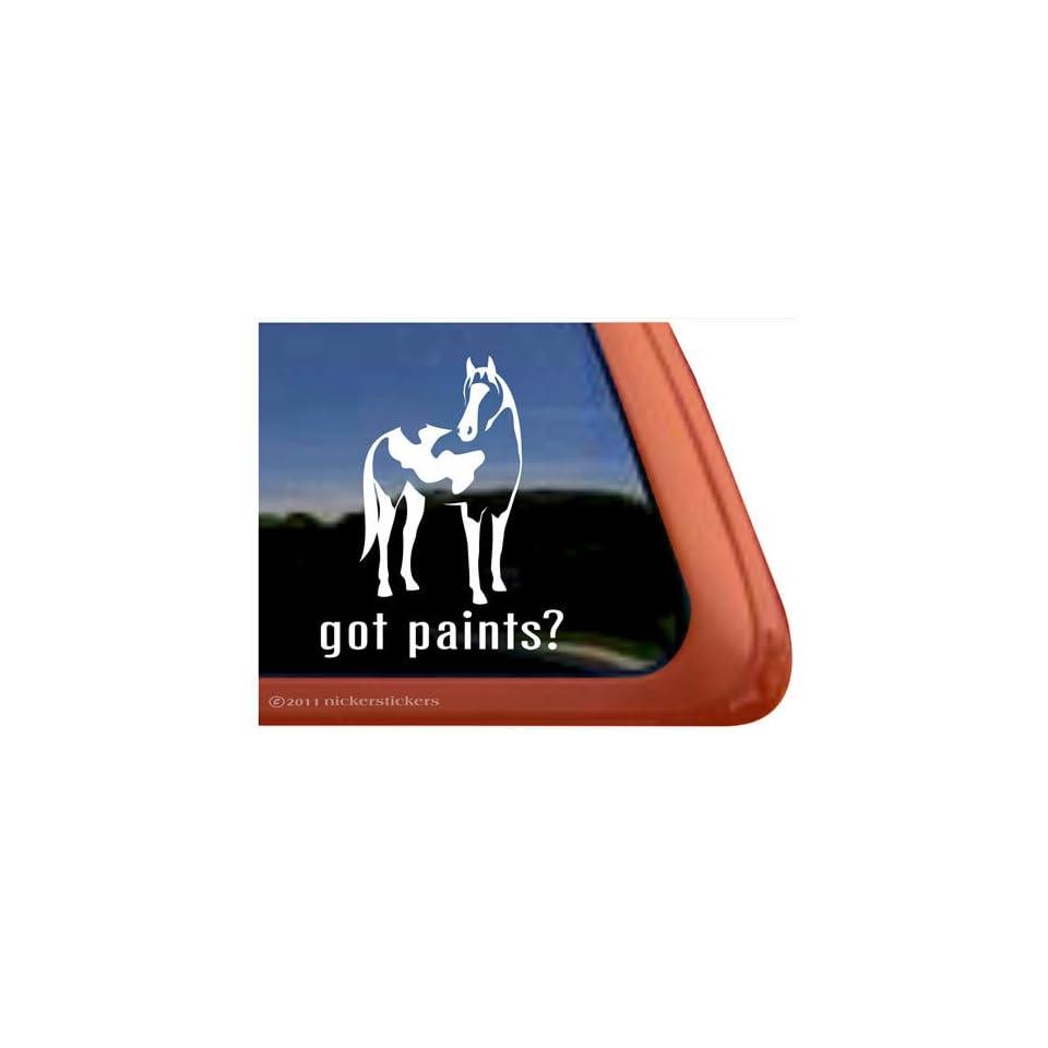 Got Paint? American Paint Horse Trailer Vinyl Window Decal Sticker