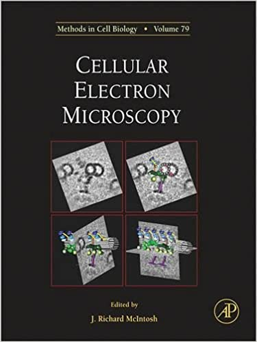 Cellular Electron Microscopy: 79 (Methods in Cell Biology)