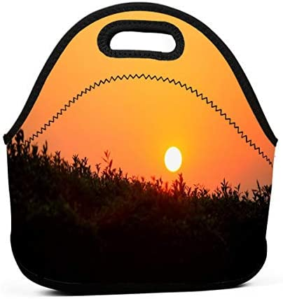 For Teens Student/School Picnic Camping/Office/Picnic Travel Bag/Picnic Travel Outdoor/Picnic Camping Youth Stylish Reusable Cooler Bag