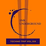Techno Trip Vol.XIII