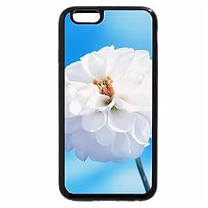 iPhone 6S Plus Case, iPhone 6 Plus Case, White Flower