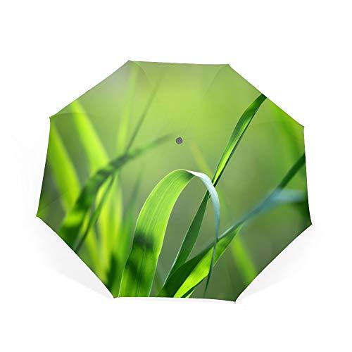 Travel Umbrella, 8 Ribs Finest Windproof Green Grass Carex Or Sedge Umbrella with Teflon Coating, Auto Open Close and Upgraded Comfort Handle ()