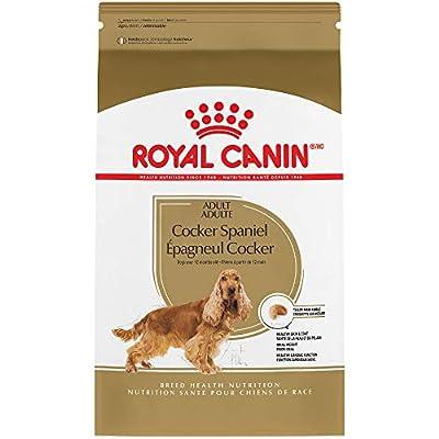 Royal Canin Breed Health Nutrition Cocker Spaniel Adult Dry Dog Food