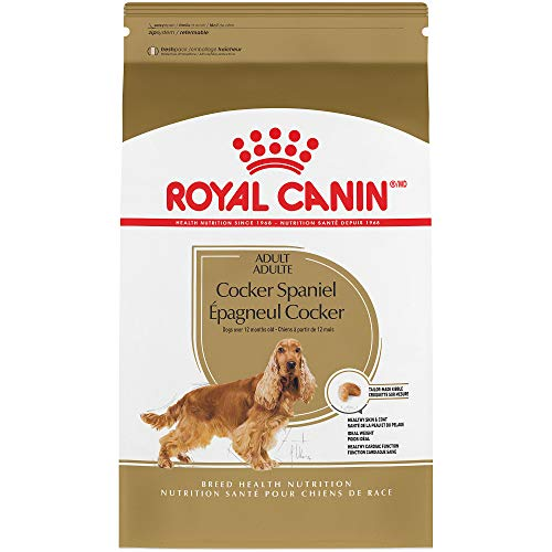 - Royal Canin Breed Health Nutrition Cocker Spaniel Adult Dry Dog Food, 6-Pound