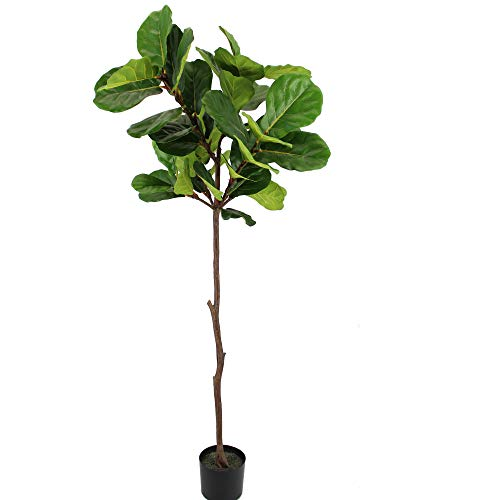 UNIQUE FOREST ARTS Artificial Tree,Artificial Plant, Artificial Fiddle Leaf Fig Tree, 6-Feet, 4-feet,Green (Size:70