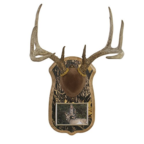 Country Oak Picture Frame (Walnut Hollow Country Deluxe Antler Display Kit with Photo Frame, Oak with Camo)