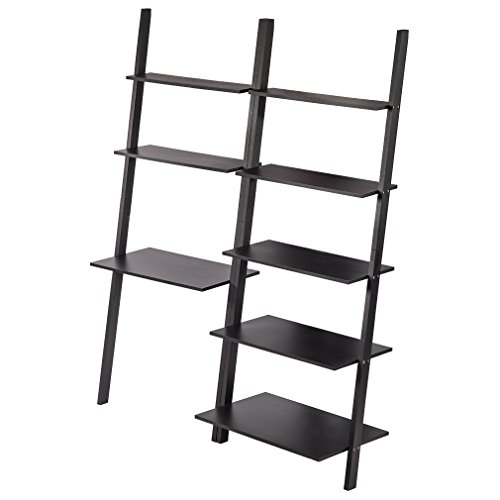 Desk Ladder Bookcase (73