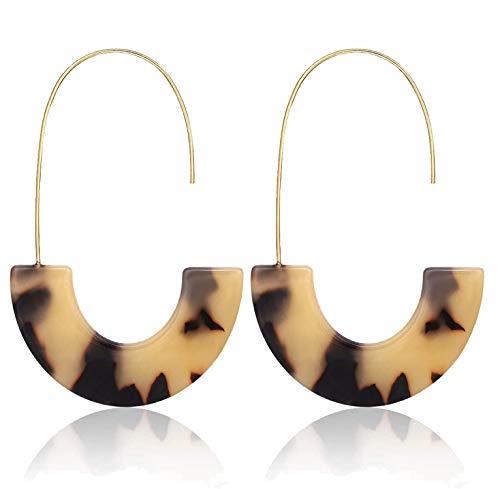 Acrylic Earrings For Women Girls Geometric Circle Resin Drop Dangle Earrings Statement Fan Hoop Earring Tortoise Stud Earrings Fashion Jewelry (acrylic Leoparp) ()