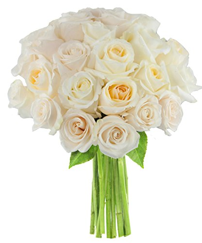 Bouquet of Long Stemmed White Roses (Two Dozen) - The KaBloom Collection Flowers Without Vase (Stemmed Bouquet White Rose Long)