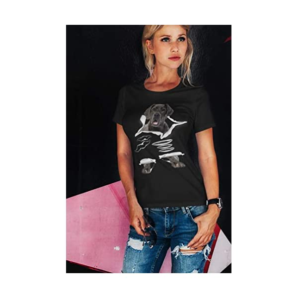 T-Shirts / Camisas / Casacos com Labradores