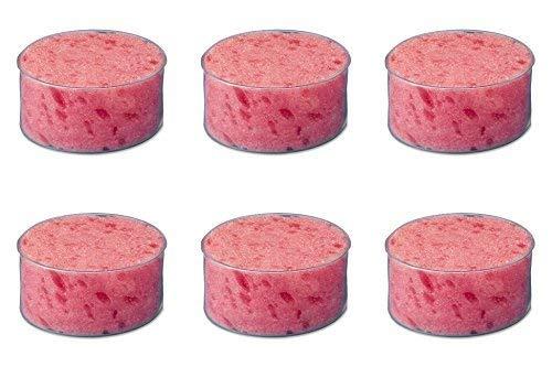 Sparco Sponge Cup Moistener, 3'' Diameter, Clear Plastic (SPR01478), 6 Packs by Sparco