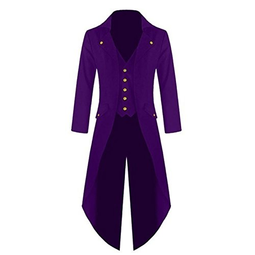 RDWY Mens Gothic Tailcoat Jacket Victorian Costume Steampunk Jacket for Halloween Party (L, purple)