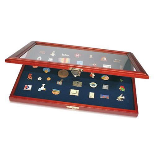 SAFE Pin Collector's Display Case for Disney, Hard Rock, Olympic Pins and others