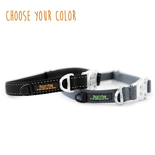 Image of Mighty Paw Metal Buckle Dog Collar, All Metal Hardware, Lightweight Collar, Reflective Stitching, Strong, Durable (Large, Grey)