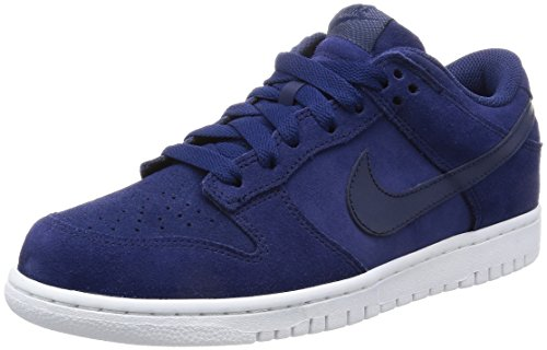Nike Dunk Retro Low Mens Trainers 896176 Sneakers Shoes (UK 7 US 8 EU 41, Binary Blue White 400)