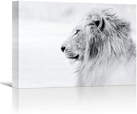 Sign Leader Lion Canvas Wall Art Black and White Wild Animals Prints Wall Art