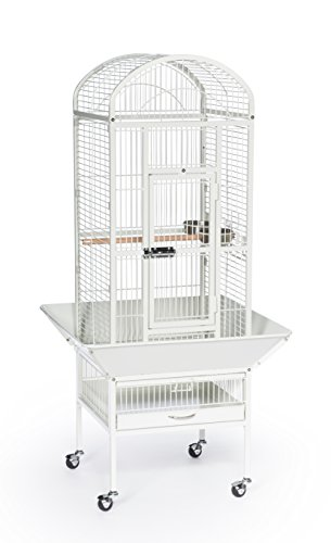 Prevue Pet Products 34512 Dometop Bird Cage, Small, Chalk White by Prevue Pet Products
