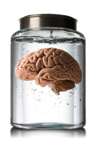 Brain in a Jar Wall Decal