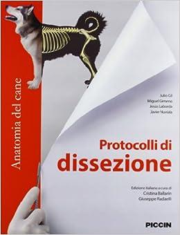 Descargar Libros Gratis Protocolli Di Dissezione. Anatomia Del Cane PDF Libre Torrent