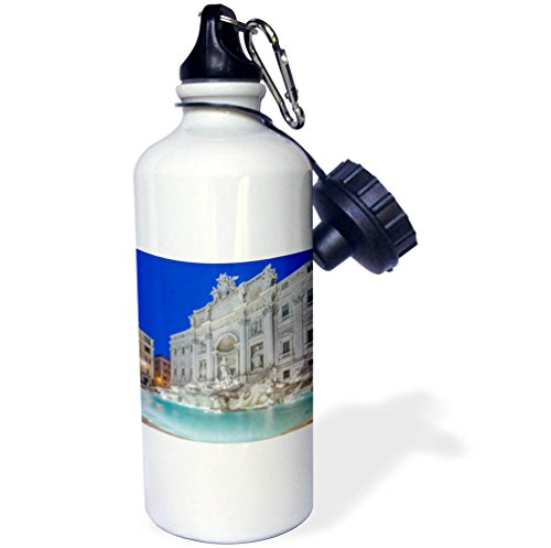 3dRose Danita Delimont - Fountains - Italy, Rome, Trevi Fountain at dawn - 21 oz Sports Water Bottle (wb_277656_1) by 3dRose