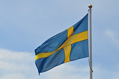 Home Comforts Framed Art for Your Wall Malmo Flag Swedish Sweden Swedish Flag 10x13 -