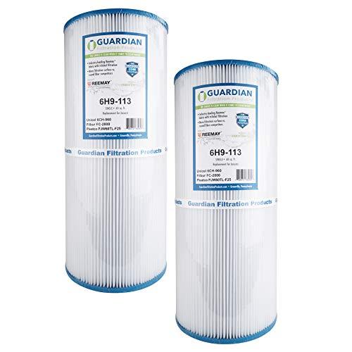 2 Guardian Pool Spa Filter Replaces Unicel 6CH-960, Pleatco Pjw60TL-F2S, Filbur FC-2800 Jacuzzi