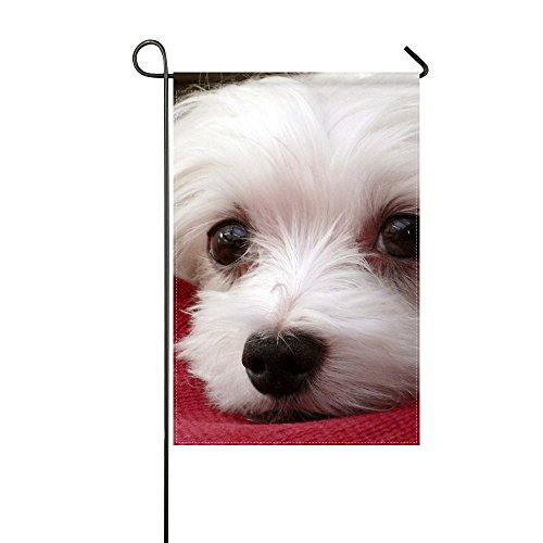 WBSNDB Garden Flag Animal Dog Maltese White Pet Fluffy Small Puppy Adorable 12x18 Inches(without Flagpole)